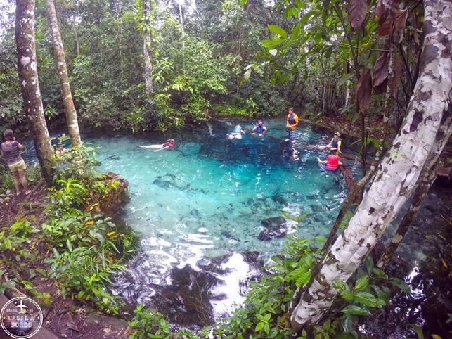 Aquário Encantado Rio Salobra